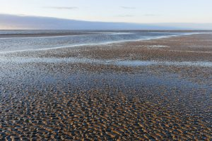 Watt Sand Wasser Sonne P1090522